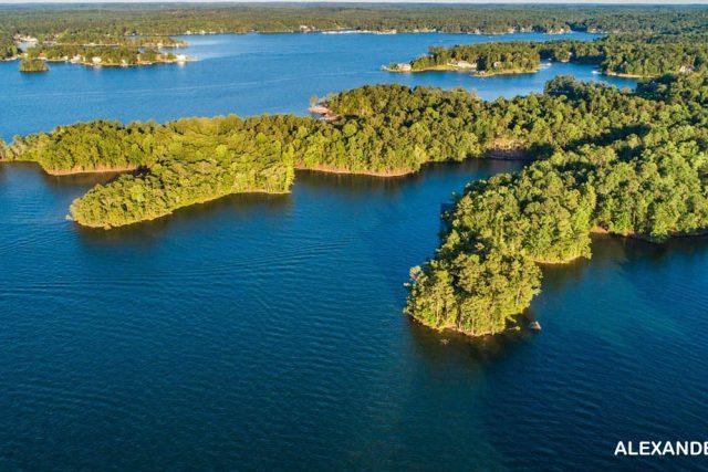 3 Hal Yang Harus Dilakukan Di Danau Martin Alabama